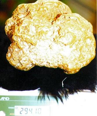 Alaskan Huge Gold Nugget