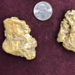 Gold Nuggets from a Dredge