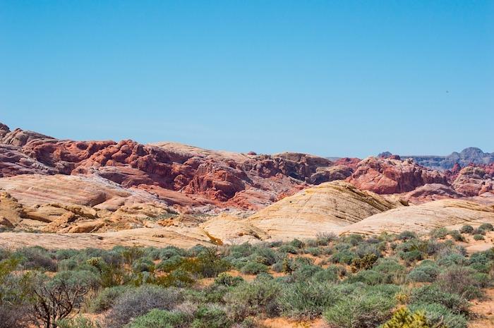 Metal Detecting Nevada