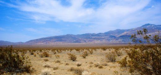 Mojave Gold Mine