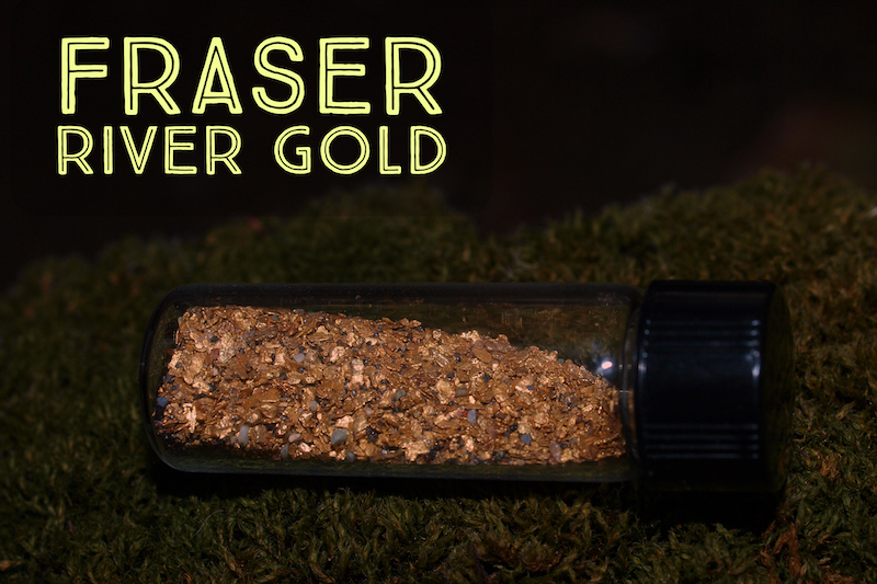 There's Still Gold Waiting to be Found in the Fraser River! - How to